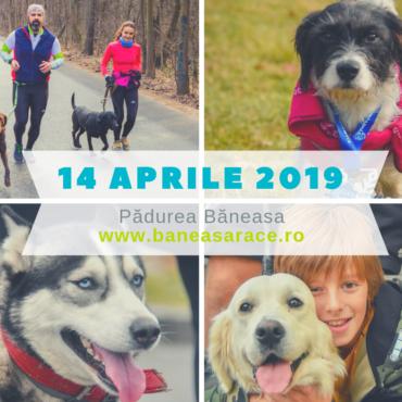 #RunningCulture: Omul și câinele împreună la alergare